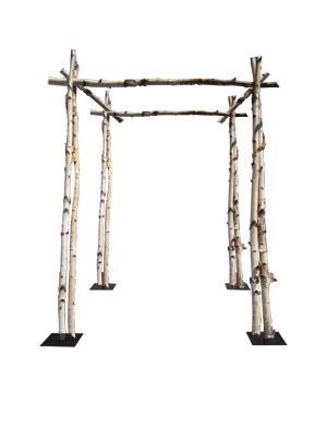 Birch Chuppah – Shippable – Ultrapom: wedding and event decor rental