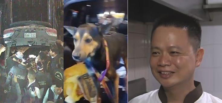 Primeras declaraciones del dueño del restaurante al que casi linchan al pensar que vende carne de perro:  #perro #perros #dog #dogs #peru #animal #animales #mascota #mascotas #noticia #noticias #dog #dogs #viral #schnauzi #cachorro #cachorros #maltratoanimal