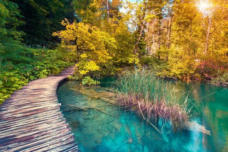plitvické jazerá - za 46? To musíš zažiť.  #croatia #nature #journey #trip #view #stunning  https://www.zlavomat.sk/zlava/560307-narodny-park-plitvicke-jazera-v-chorvatsku