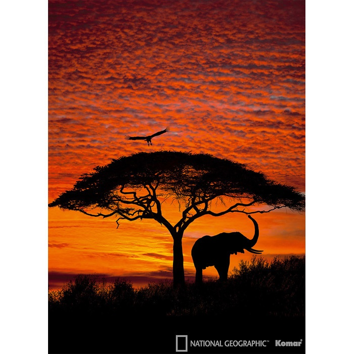 African Sunset Wall Art