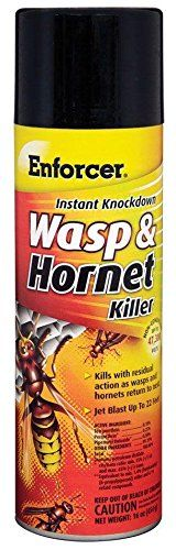 12 Pack Enforcer EWHIK16 Instant Knockdown Wasp  Hornet Killer Spray  16oz ReadytoUse Aerosol *** Want to know more, click on the image.