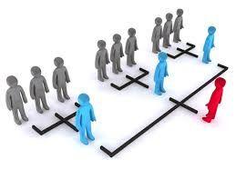 Ley de la división  Siendo líder de una categoría se procura dividirla en varias, utilizando marcas  diferentes para cada una de las categorías que surjan.