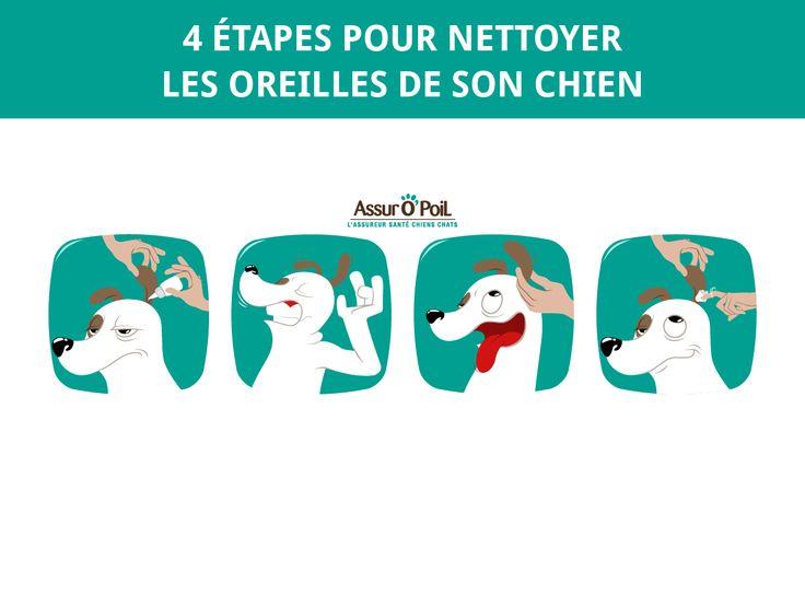 Les 25 Meilleures Id Es Concernant Dessin Chien Facile Sur Pinterest Marches Pour Chien