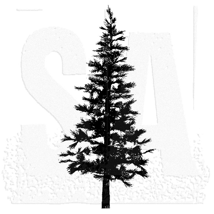 tim-holtz-p2-1258-pine-tree.png