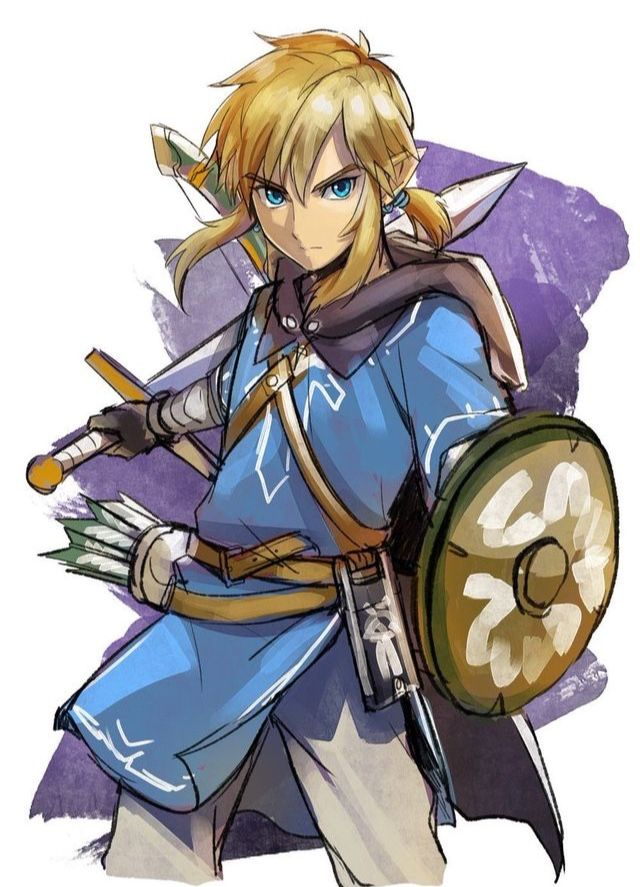 Link Legendofzelda Breathofthewild Zelda Link Warrior