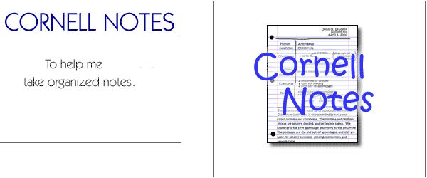 Best Of Cornell Notes Template Word: 81 Best Images About Study Skills On Pinterest