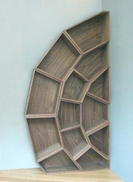 Very cool corner spiderweb bookshelf