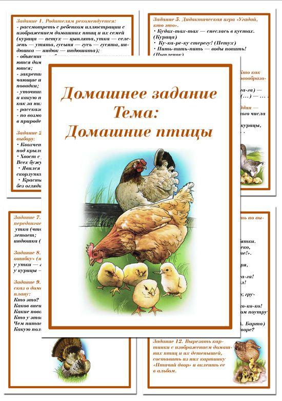 Картотека домашних заданий для средней и старшей группы - Домашние птицы