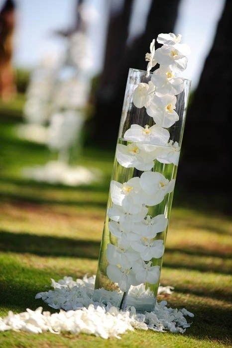 submerged centerpieces | phaleanopsis orchid underwater centerpiece