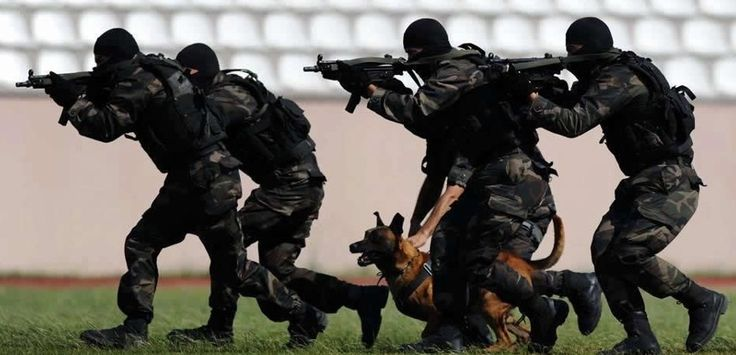 """Soldier of Fortune Magazine shares.....  Turkish """"Special"""" Swat Team!!!   This guy could have been to Greece by the time these Special Forces gained access.       http://www.funker530.com/turkish-special-forces-door-breech/"""