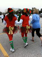 A few weeks ago, a coworker asked if I would be interested in doing the Reindeer Run 5k  at Sea World . I just started running this summer...