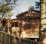 Enjoy a luxury break in a beautiful woodland Treehouse | Center Parcs