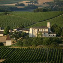 Vignoble - Vins de Gaillac
