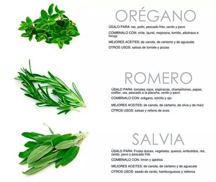 Uso de las hierbas