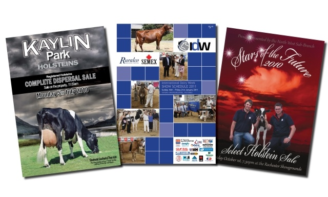 From sale catalogues to full product catalogues, we can typeset, design, print and finish the lot.