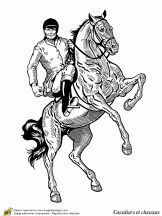 cavaliers et chevaux se cabrer