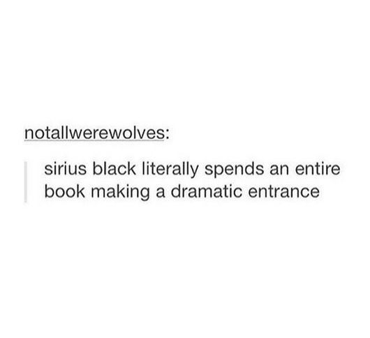 Sirius Black is actually the biggest drama queen to ever exist ever— why so you think he didn't just grab the rat and run?