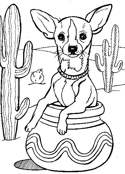 Chihuahua Coloring Page For Kids