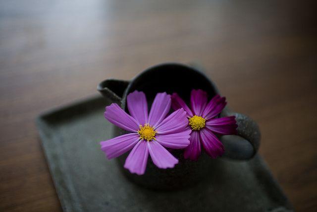 http://www.flickr.com/photos/minato/6237414980/