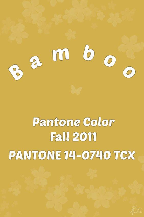 Pantone Bamboo | 2018 - 1960 | Pantone Colors | Pantone