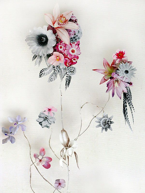 Flower Construction Series   the work of incredible paper artist, Anne Ten Donkelaar. Anne melds real organic materials with bits of paper to create stunning flora and fauna hybrids.