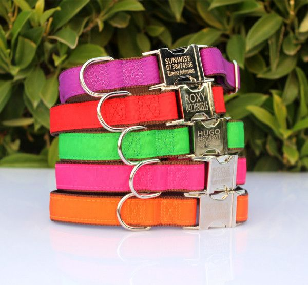 Personalised Dog Collars in Multiple colours http://www.custompetcollars.com.au/collections/frontpage/products/personalised-dog-collar