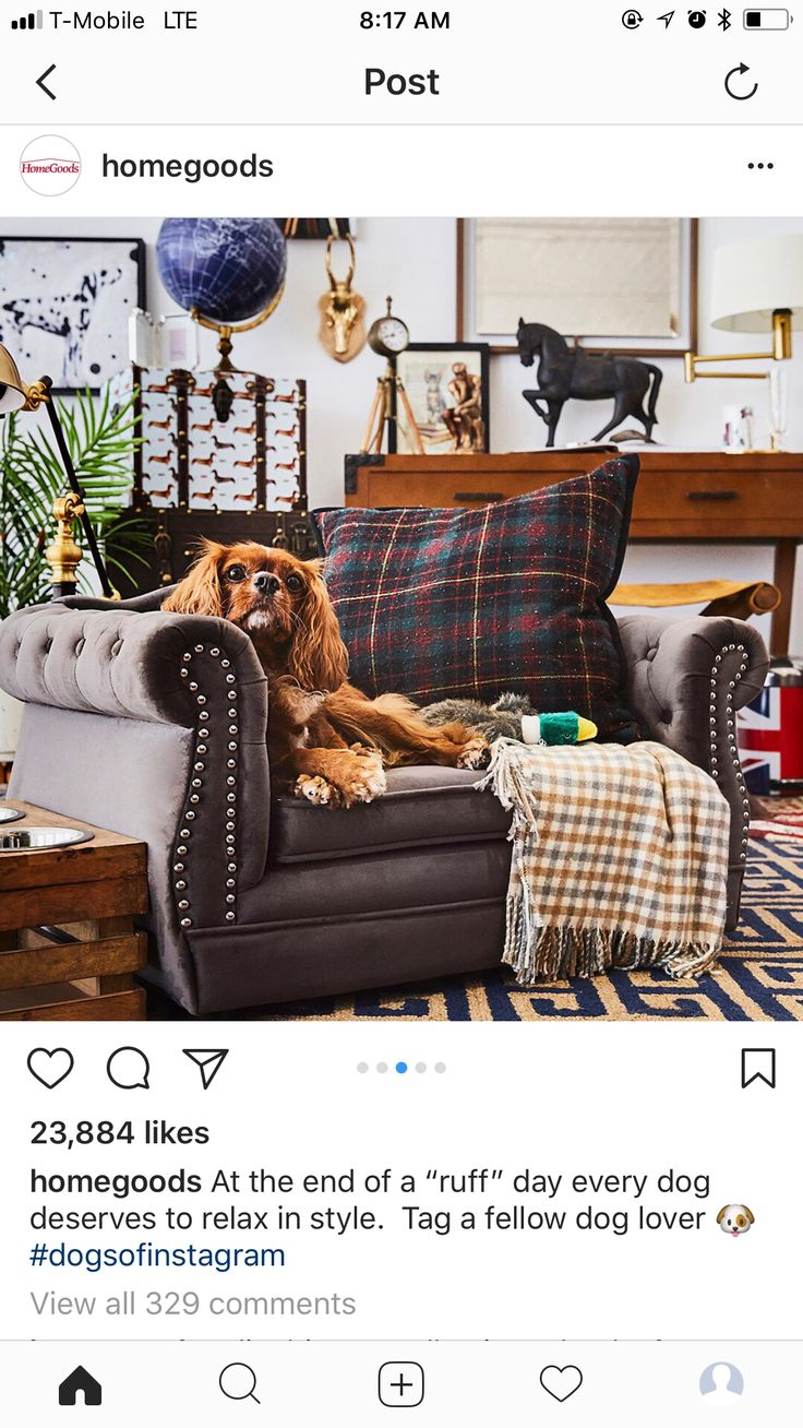 Dog couch bed tufted