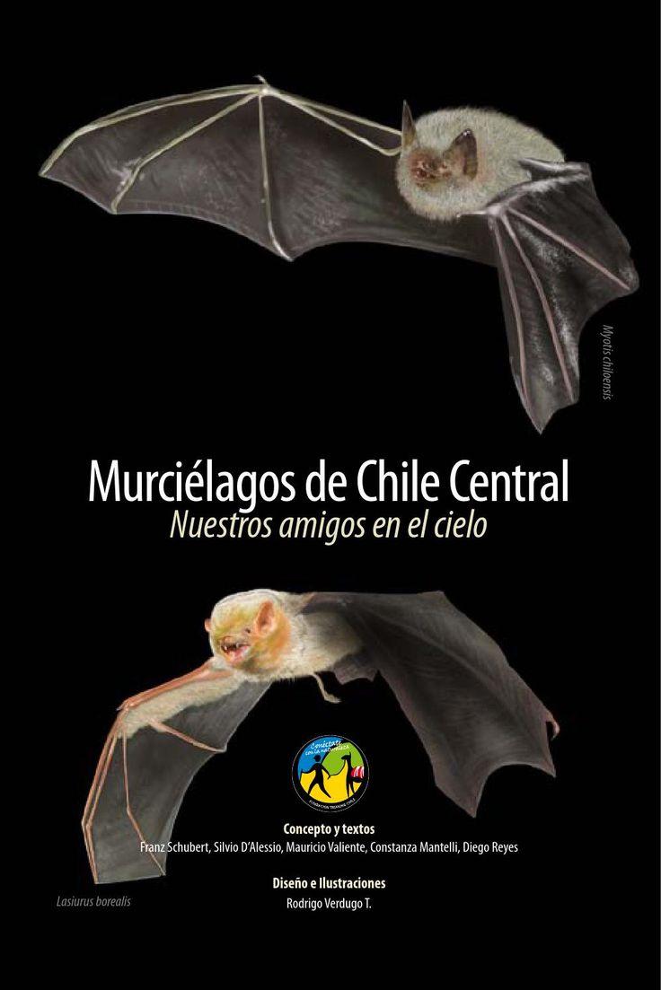 Con este manual podrás conocer mejor los murciélagos de Chile central, entender cómo y dónde viven; y así transformarte en su amigo.