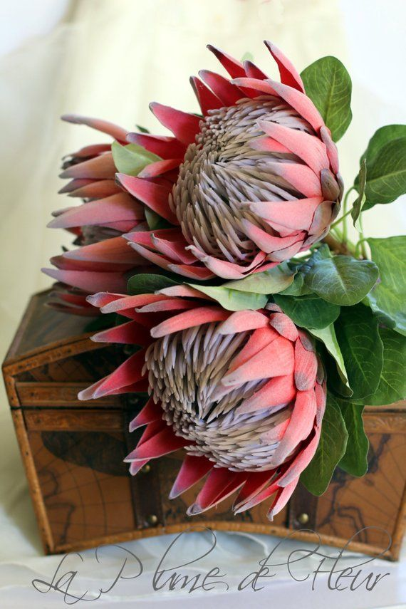 King Protea Artificial Protea Red King Protea Single Stem Protea Flower Protea Art Protea