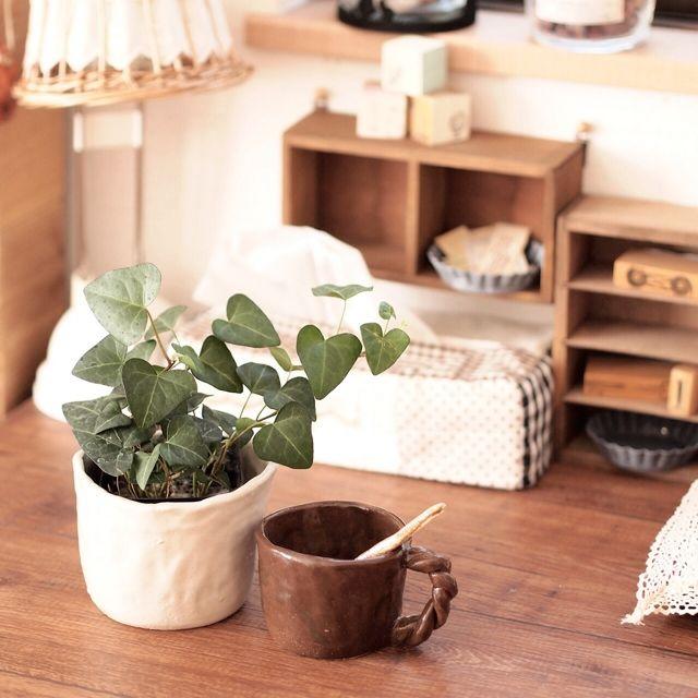 IKEA/鉢カバー…などのインテリア実例 - 2014-01-26 20:50:47
