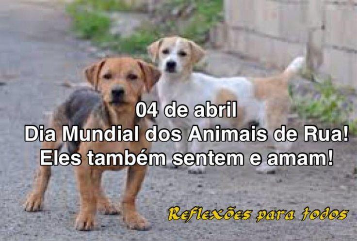 O dia 4 de abril é comemorado o Dia Mundial dos Animais de Rua.  Parabéns a todas as pessoas que cuidam dos #animais de rua! Acesse a mensagem com vários links de mensagens pertinentes, clicando na imagem,