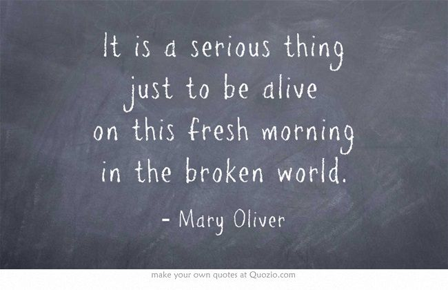 """""""It is a serious thing just to be alive"""" -Mary Oliver"""