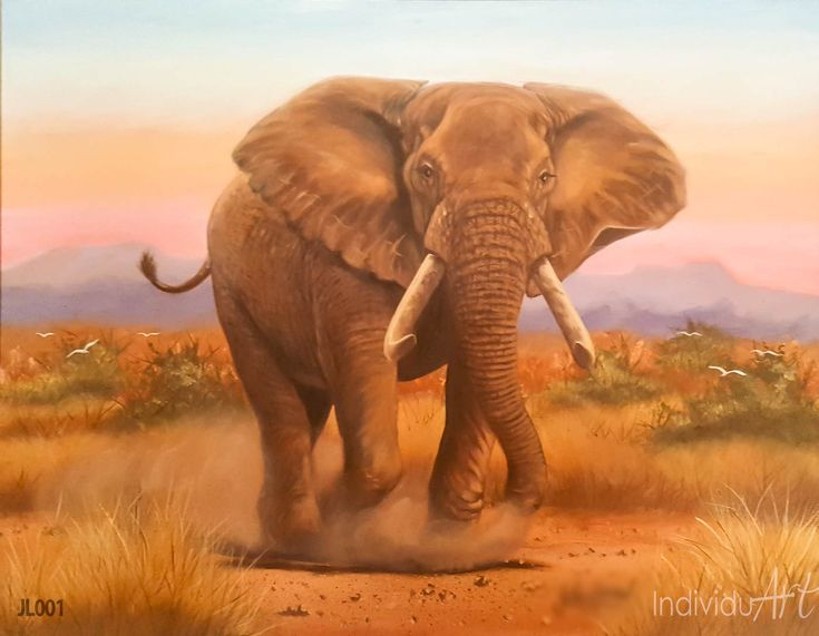 "African elephant oil painting Be mesmerized as this African Elephant stands in your lounge - All in awe. Painting Size: 77 x 62 cm | 30 x 24"" Media: Oil on canvas   #art #arty #artist #artlovers #artsy #artoftheday #paintings  #fineart #fineartist #Africanart #oilpainting #painting #oiloncanvas #illustration #drawing #instaartist #artgallery #masterpiece #instaart #beautiful  #wildlife #wildlifeplanet #wildlifephotography #wildanimals #bigfive #Elephant"