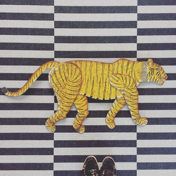 vintage tiger ZOO tiger sign, striped rug, dolfie shoes