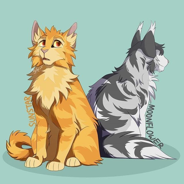 Sunstar x Moonflower   Warrior cats books, Warrior cats, Warrior cat memes