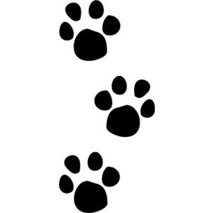 Clip Art Paw Prints Clip Art 1000 ideas about paw print clip art on pinterest gallery for free kitten art