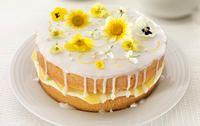 Lemon and Elderflower Drizzle Cake #recipe