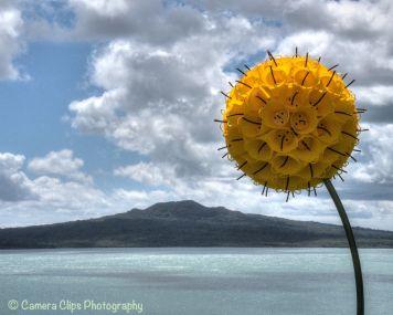 Blooming Buckets - John Ferguson