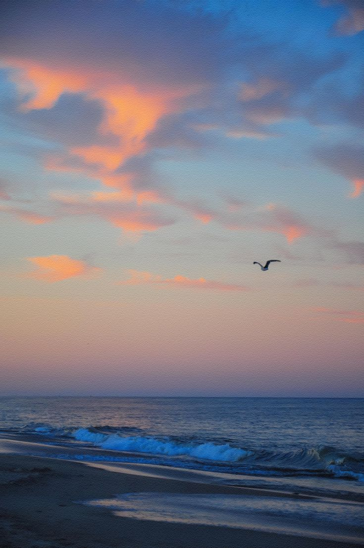 Bethany Beach, Delaware is a wonderful place to visit or to take your kids.