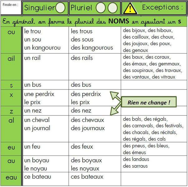 Rappel grammatical: formation du féminin, formation des pluriels irréguliers.