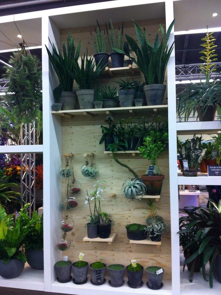 With plants @waterdrinker
