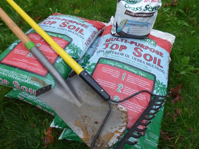 What Easy $65 Fix Improves Bare Areas In Front of Your House?: Tools and Materials Needed For Growing a Lawn From Seed