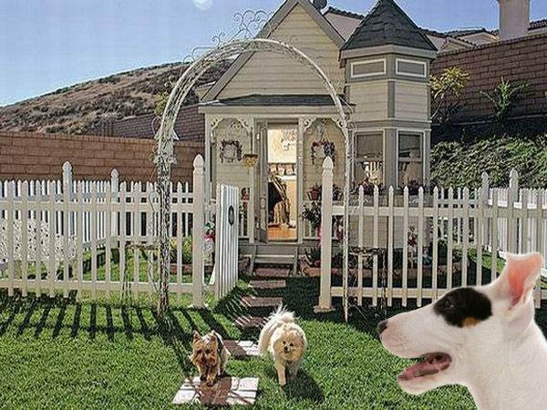 Victorian Dog House for Three | This Victorian-style doggie mansion cost a cool $20,000 to build. It's home to three fabulous dogs, Chelsea, Darla, and Coco Puff. The home is a smaller version of the owner's historic Victorian home. She commissioned the project after an owl almost kidnapped one of her Pomeranians. The structure is large enough that she can enter and visit her canine neighbors.
