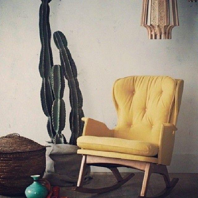 Cactus by @homedecorist