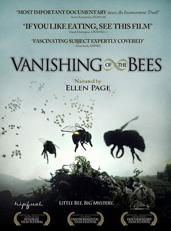 Vanishing of the Bees - Save the Bees! If they go.. we go.