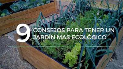 Consejos para tener un jardín mas ecológico