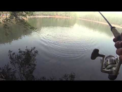 How to catch trout - (More info on: http://1-W-W.COM/fishing/how-to-catch-trout/)