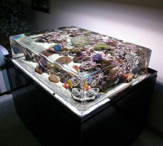 Open top, zero edge aquarium