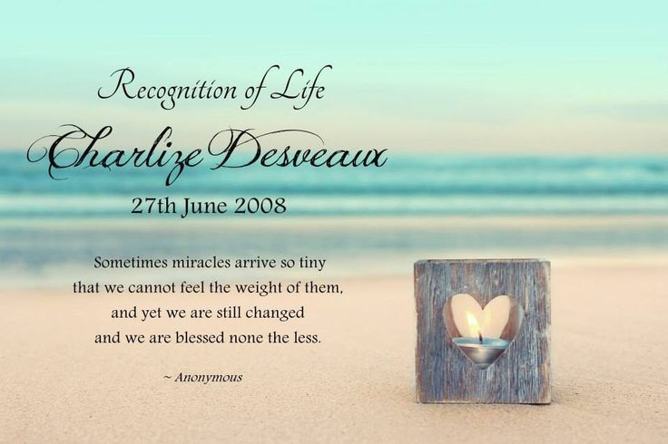 Recognition of life. Charlize Desveaux. 27.06.2008