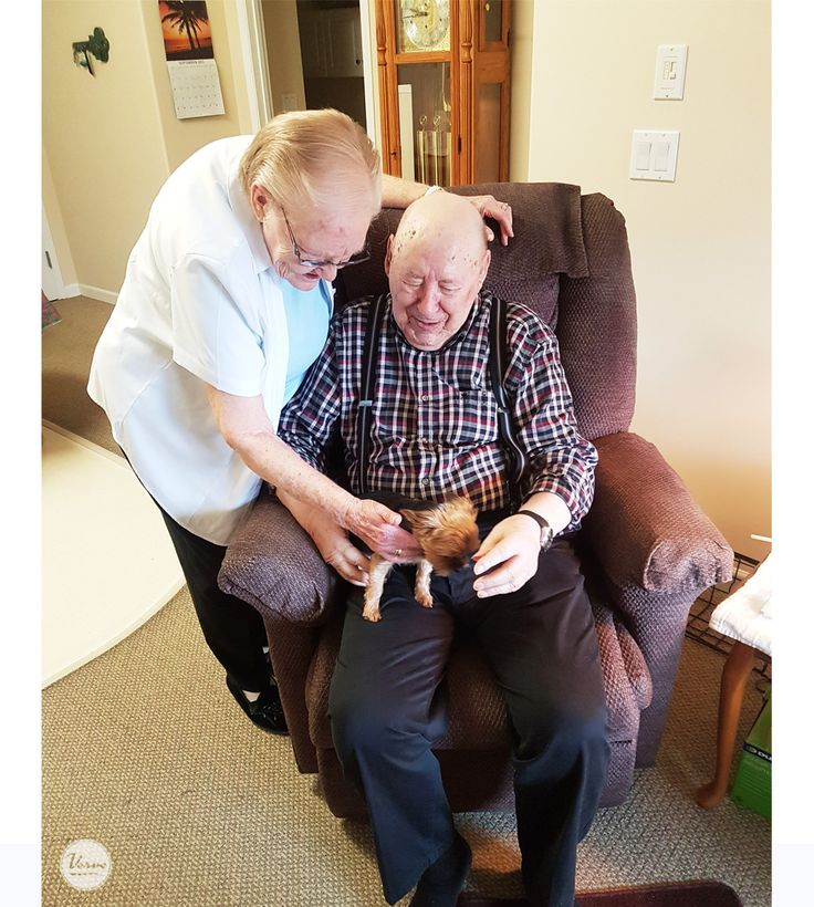 Residents at Dr. Hemstock Residence had their key wish fulfilled of spending some time with a puppy.